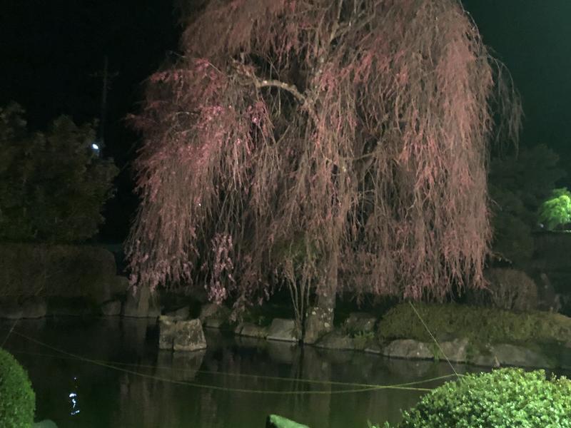 奥平温泉 遊神館 写真ギャラリー2