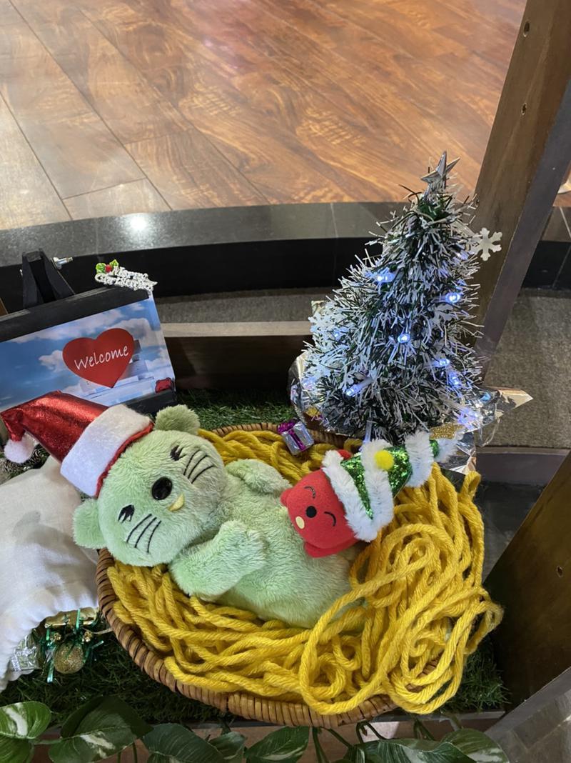 Taaさんの湯乃泉 草加健康センターのサ活写真