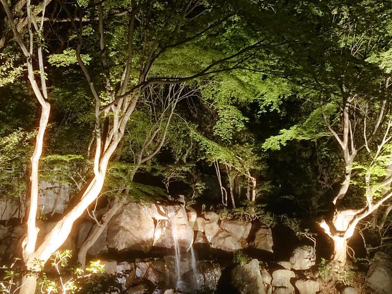 豊島園 庭の湯 写真ギャラリー4