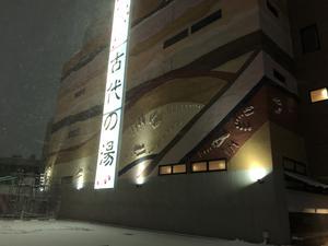 東京天然温泉 古代の湯 写真