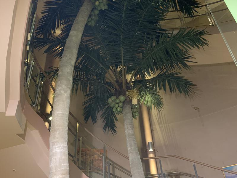 スパ&ホテル 舞浜ユーラシア 写真ギャラリー5