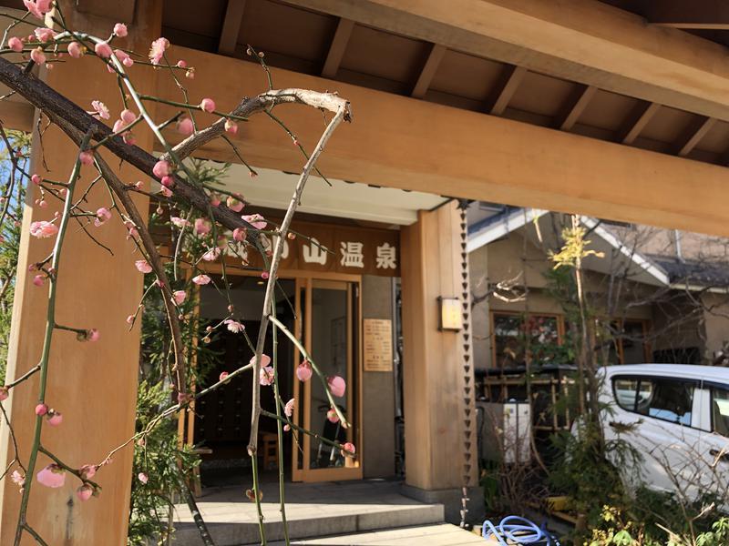 いきなり梅太郎さんの武蔵小山温泉 清水湯のサ活写真