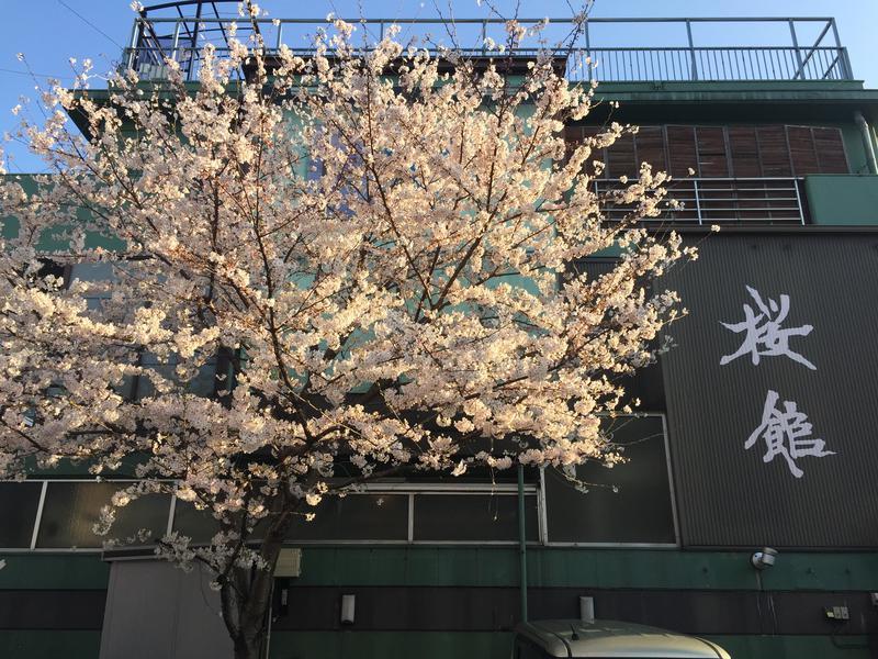 桜館 写真ギャラリー4