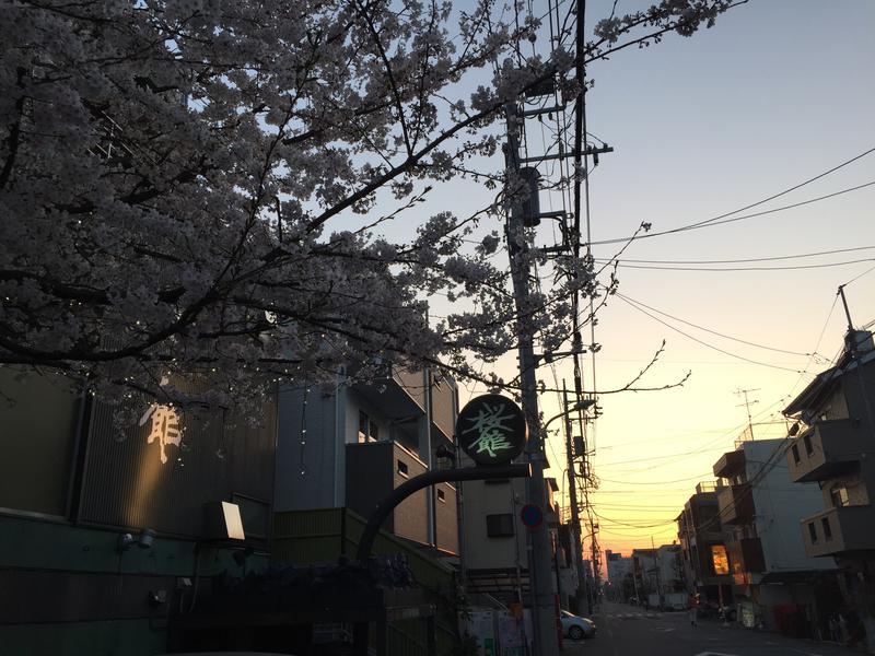 桜館 写真ギャラリー5