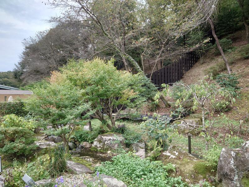 天然温泉 三峰 中庭から見える景色