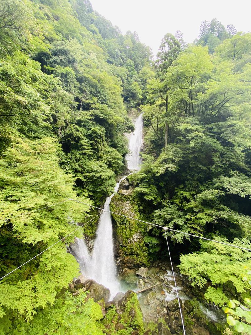 やまピー監督さんの東山温泉メイプルプラザのサ活写真