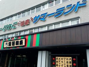 ニューびわこ 健康 サマーランド&ホテル 写真