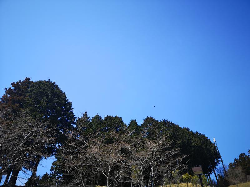 Sayoko-daisyさんの伊賀の国 大山田温泉 さるびののサ活写真