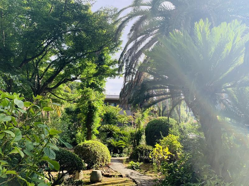 ELLEさんの蓮台寺温泉 清流荘のサ活写真