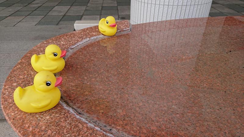 めいさんのホテルエリアワン広島ウィングのサ活写真