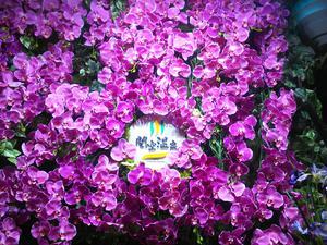 関空温泉ホテルガーデンパレス 写真