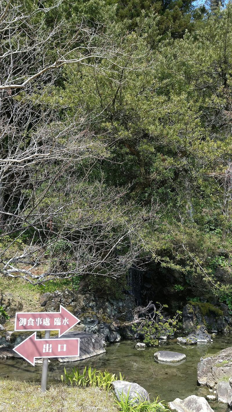 ゆーいち(超回復派)さんの山水園 翠山の湯のサ活写真
