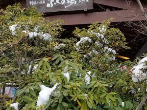 稲佐山温泉ふくの湯 写真