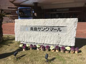 青島サンクマール 写真