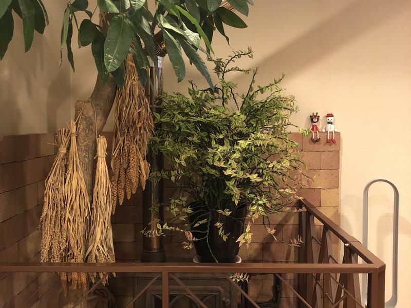 冠岳温泉 ~露天風呂、サウナ 写真ギャラリー4