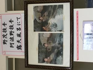 ピュア涌泉寺 写真