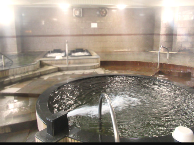 天然温泉 源泉かけ流しの宿 鶴崎ホテル 写真ギャラリー2