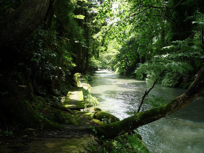 mnmさんの渓流温泉 冠荘のサ活写真