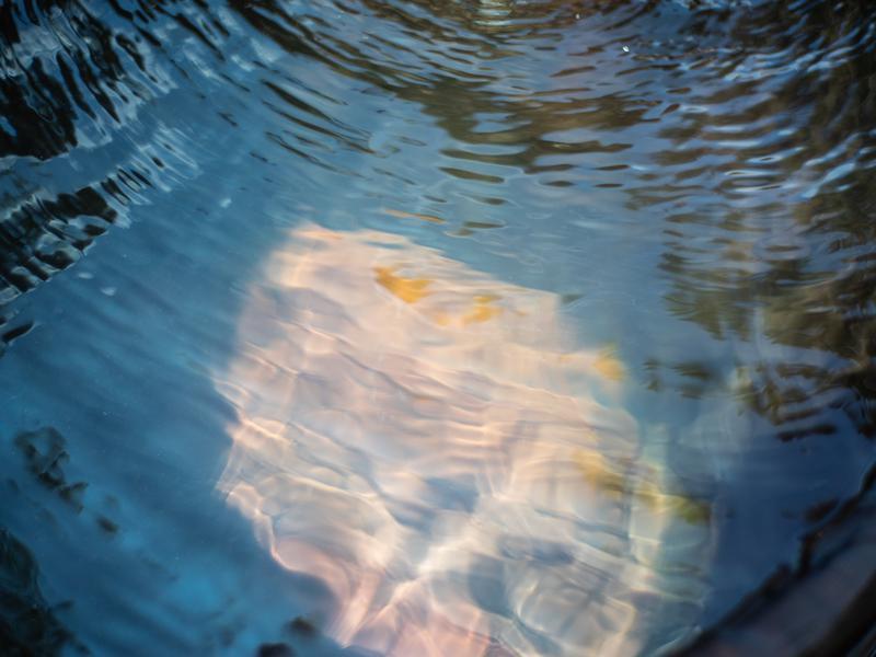 The Sauna 天然の川 水風呂