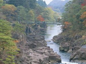 厳美渓温泉 いつくし園 写真