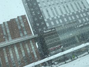 ワイズホテル旭川駅前 写真