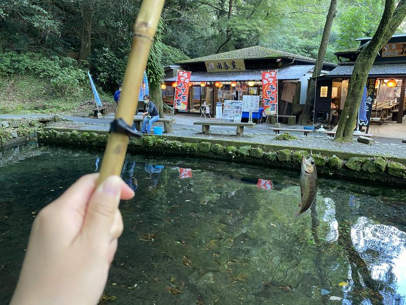 小籠包さんの天岩戸温泉(天岩戸の湯)のサ活写真