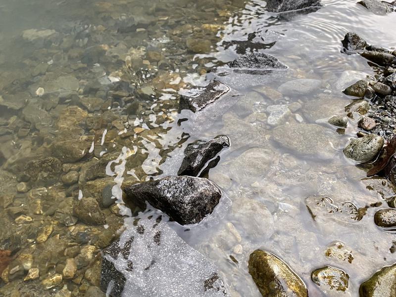 氷川キャンプ場 写真ギャラリー2