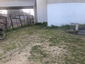 江戸川妙典スーパー堤防自由広場 写真