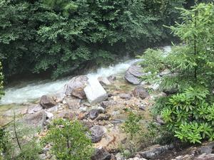 廻り目平キャンプ場 写真